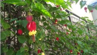 スクリーンショット-2014-09-21-13.29.07.png