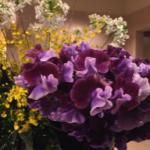 スクリーンショット-2015-02-01-20.25.27.png