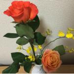 スクリーンショット-2015-02-10-18.07.15.png