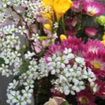 スクリーンショット-2015-03-14-22.52.31.png