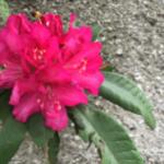 スクリーンショット-2015-04-05-21.38.14.png