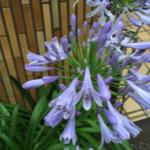 スクリーンショット-2015-06-21-12.56.18.png