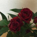 スクリーンショット-2015-09-03-21.41.33.png