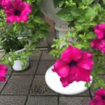 スクリーンショット-2015-09-03-21.42.11.png