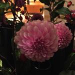 スクリーンショット-2015-10-29-9.42.13.png